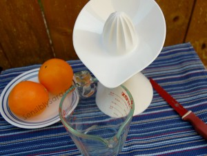 Kids in the Kitchen: Karma Kiss Queezy Juicer #Review