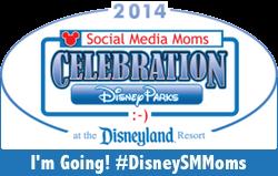 Disney Social Media Moms 2014