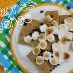 S'Mores Nachos | SensiblySara.com