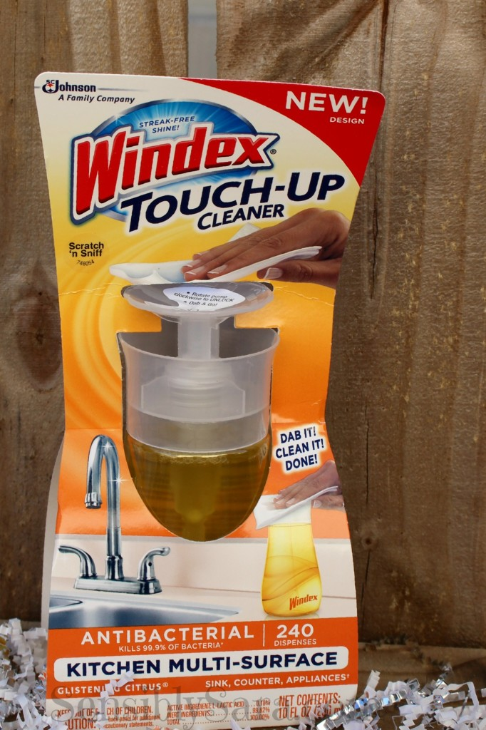 Windex Touch-Up | SensiblySara.com
