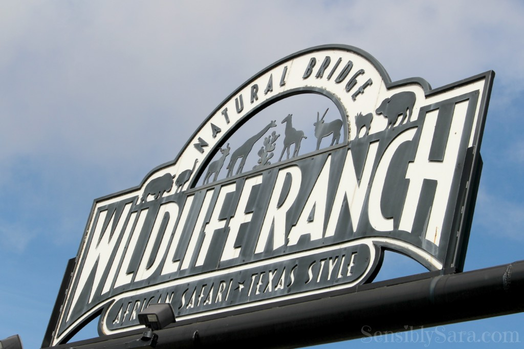Natural Bridge Wildlife Ranch | SensiblySara.com