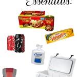 Tailgating Essentials   SensiblySara.com