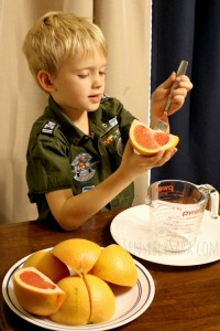 Kids in the Kitchen: Grapefruit Pie