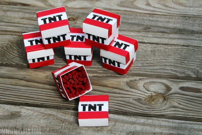 TNT Party Favors | SensiblySara.com