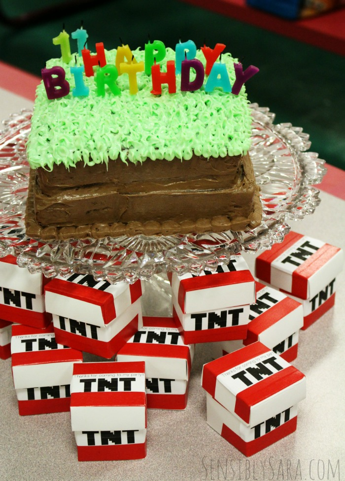 Easy Minecraft Cake and TNT Party Favors | SensiblySara.com