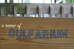 6 Things I Learned at Florida's Gulfarium #EmeraldCoasting