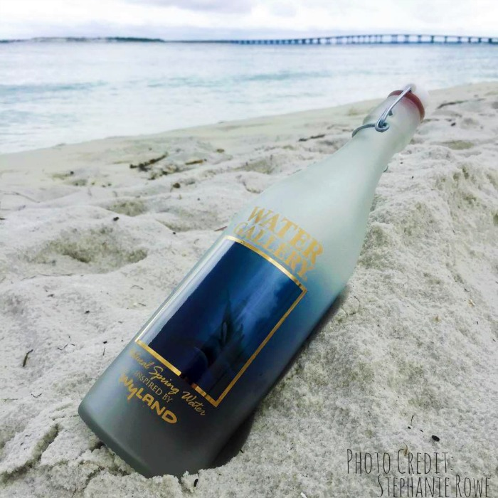 Water Gallery Reusable Water Bottle | DestinMom.com