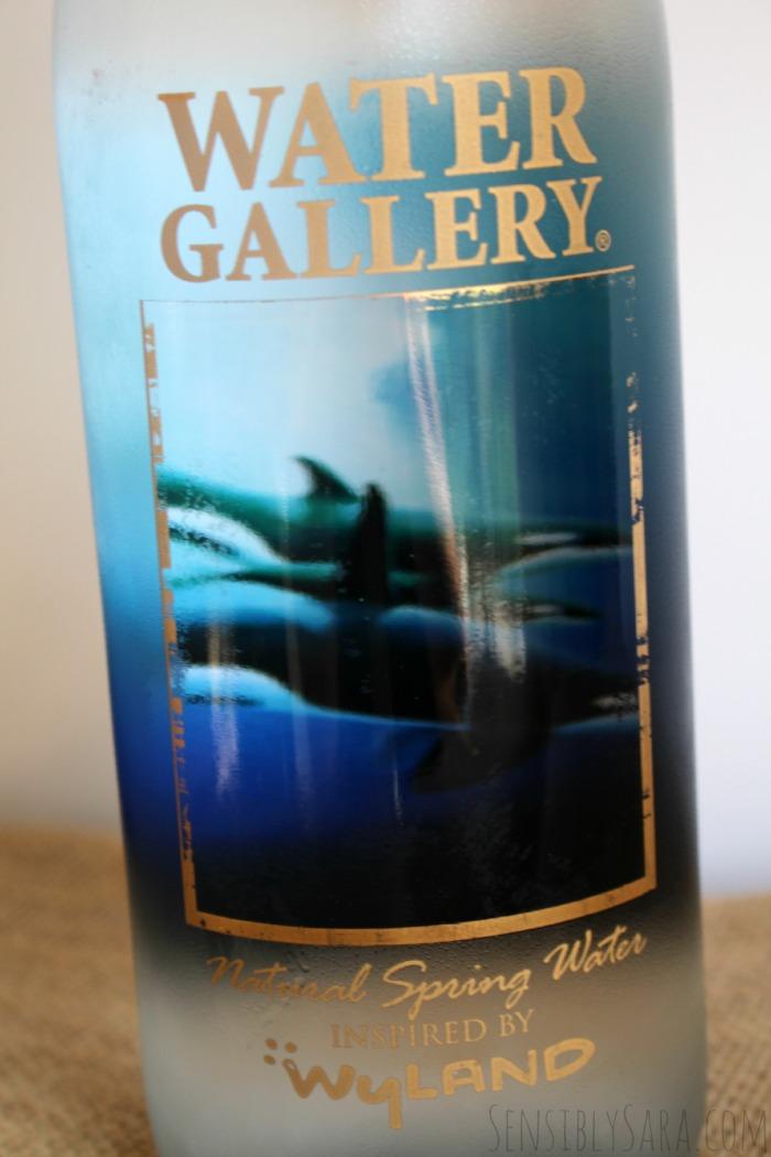 Water Gallery Reusable Water Bottle | SensiblySara.com