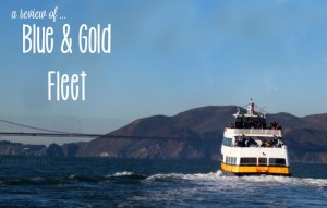 Take the Blue & Gold Fleet San Francisco Bay Cruise
