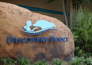 SeaWorld San Antonio's Discovery Point: Swim with Dolphins