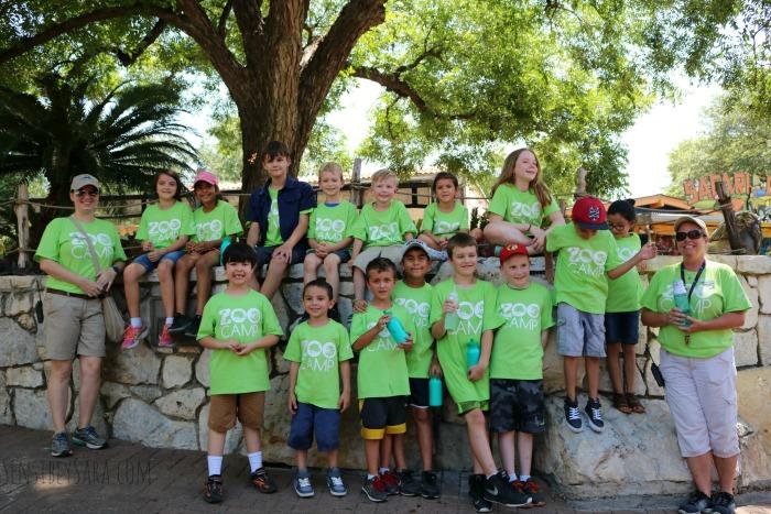 San Antonio Zoo Summer Camps for Kids   SensiblySara.com