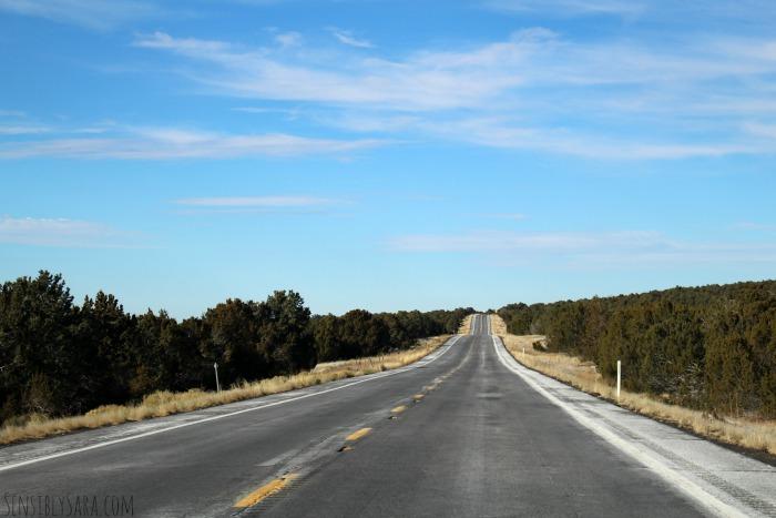 Road Trip | SensiblySara.com