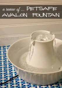 July is Pet Hydration Month + PetSafe Avalon Fountain Review