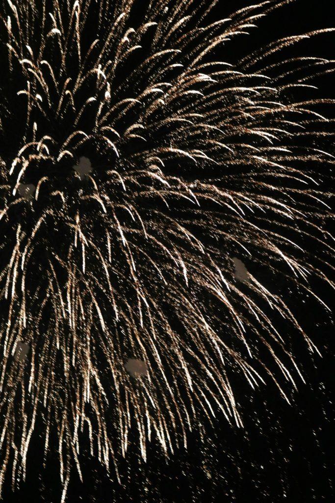 Disney World Fireworks | SensiblySara.com