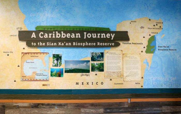 A Caribbean Journey | SensiblySara.com