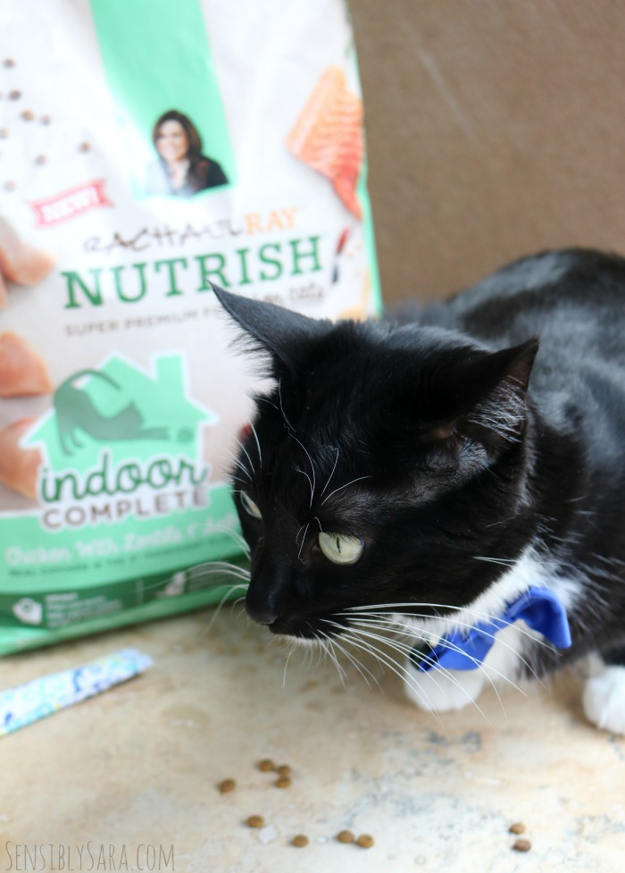 Rachael Ray Nutrish Cat Food | SensiblySara.com
