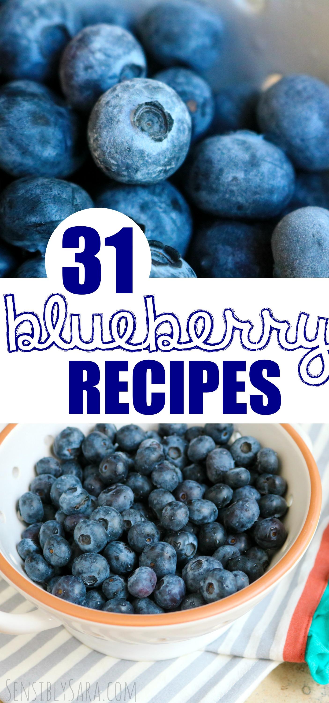 Blueberry Recipe Round Up | SensiblySara.com