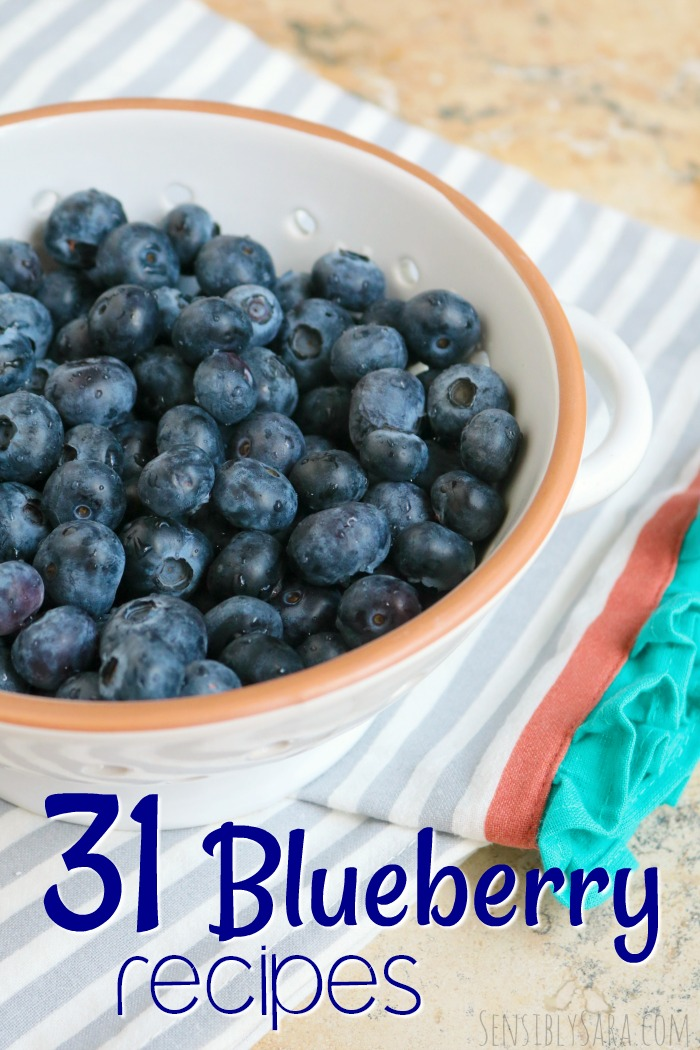 Blueberry Recipes for National Blueberry Month | SensiblySara.com