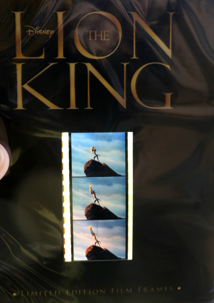 The Lion King Film Frames   SensiblySara.com