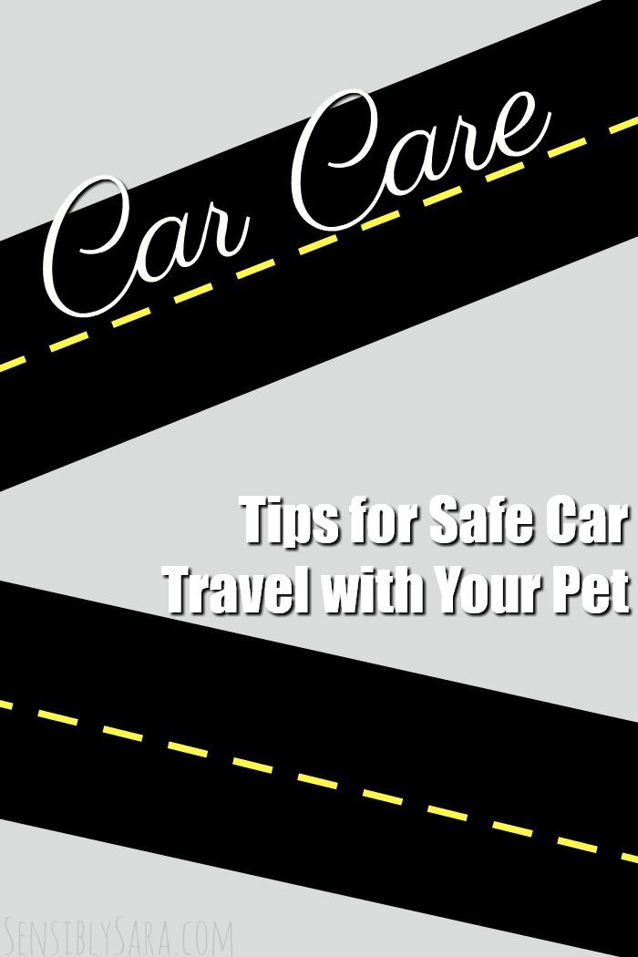 Tips for Safe Car Travel with Your Pet | SensiblySara.com