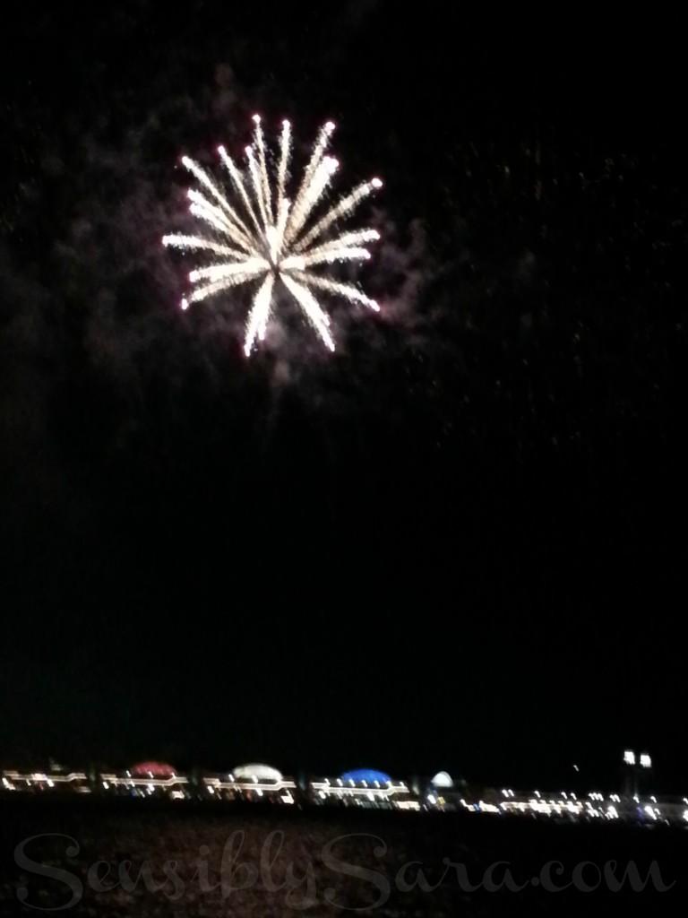 Fireworks - Chicago   SensiblySara.com