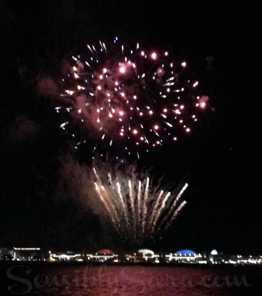 Navy Pier Fireworks   SensiblySara.com