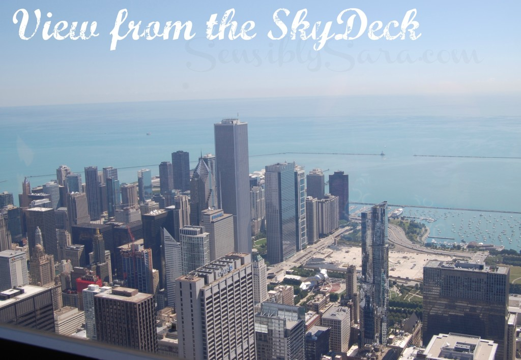 View from the SkyDeck Chicago   SensiblySara.com
