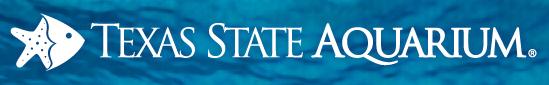 Texas State Aquarium