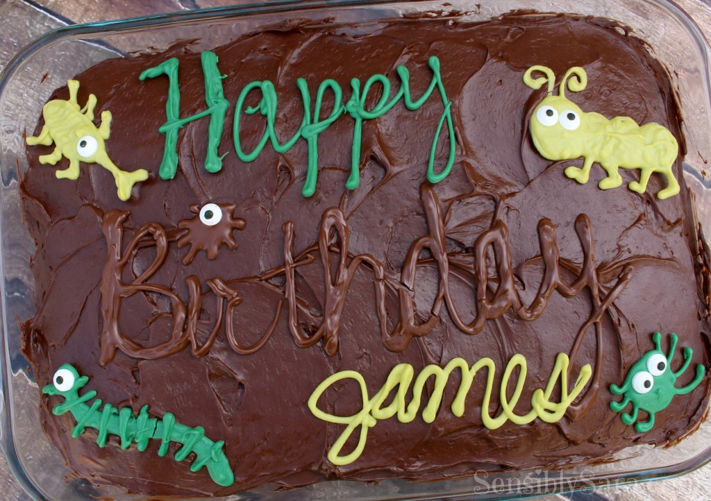 Chocolate Bugs on a Cake | SensiblySara.com