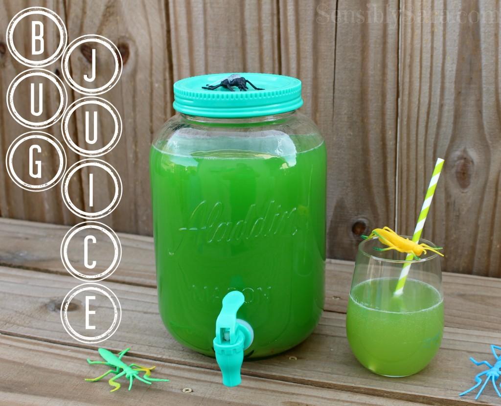 Bug Juice Recipe | SensiblySara.com