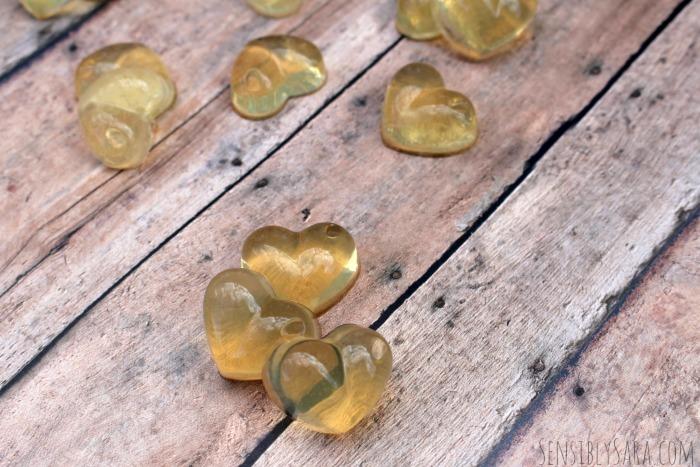 Homemade Fruit Snacks | SensiblySara.com