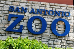 Wordless Wednesday: San Antonio Zoo Photo Walk