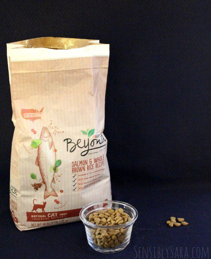 Purina Beyond Grain Free Salmon Dry Cat Food