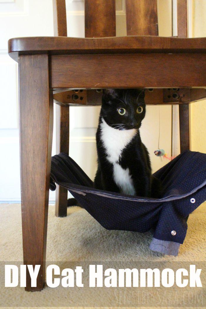 pamper your pet with a diy cat hammock  ad  petslovebeyond  rh   sensiblysara