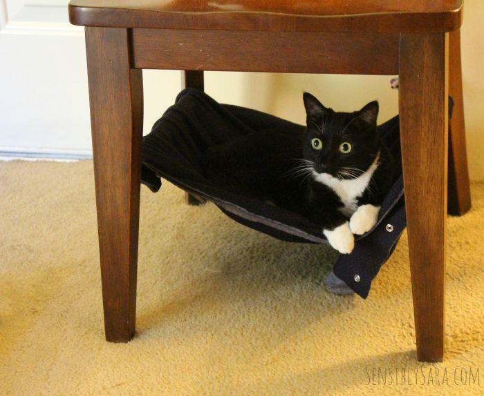 Purina Beyond Cat Food >> Pamper Your Pet with a DIY Cat Hammock #ad #PetsLoveBeyond
