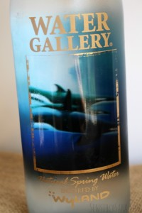 Water Gallery: Reusable Water Bottle {and #Giveaway}