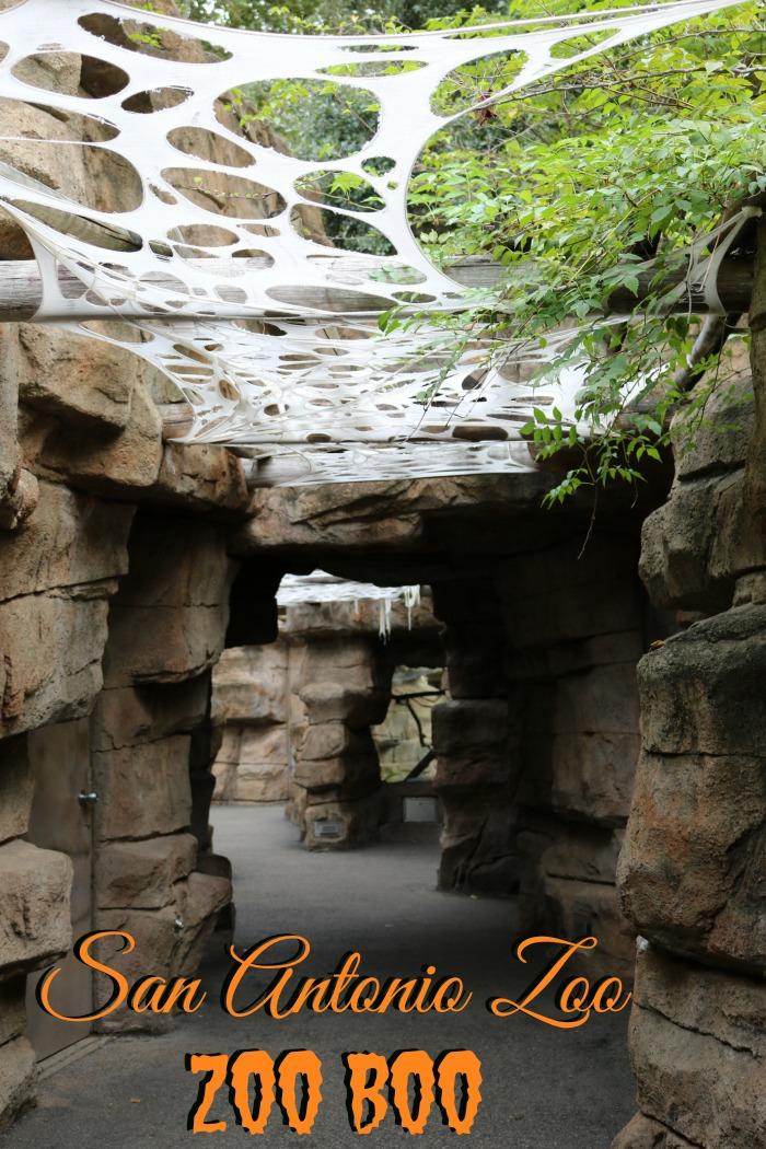 San Antonio Zoo Boo | SensiblySara.com