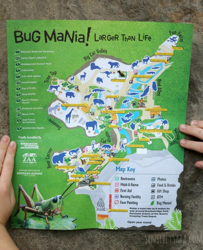 San Antonio Zoo Map - Library and Zoo Idoimages.co