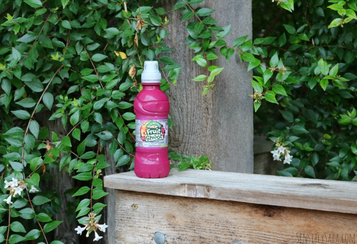 Fruit Shoot Fruit Punch | SensiblySara.com