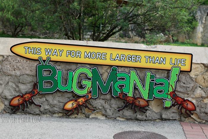 San Antonio Zoo Exhibit | SensiblySara.com