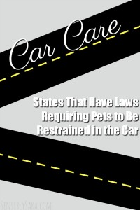 States That Have Laws Requiring Pets to Be Restrained in the Car