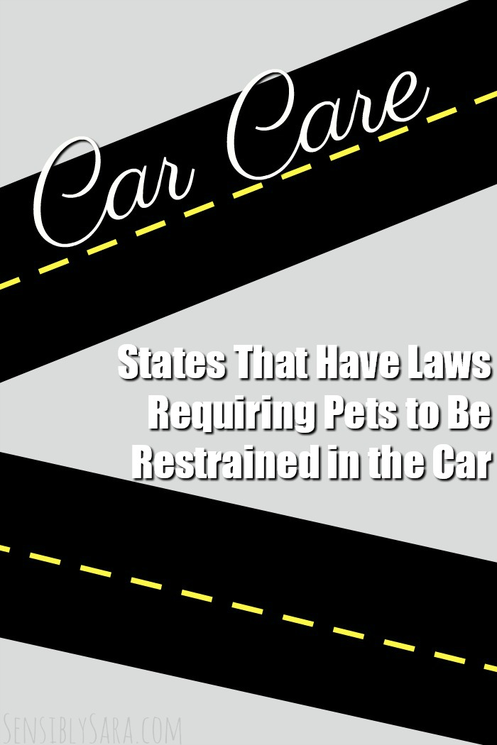 States That Have Laws Requiring Pets to Be Restrained in the Car | SensiblySara.com