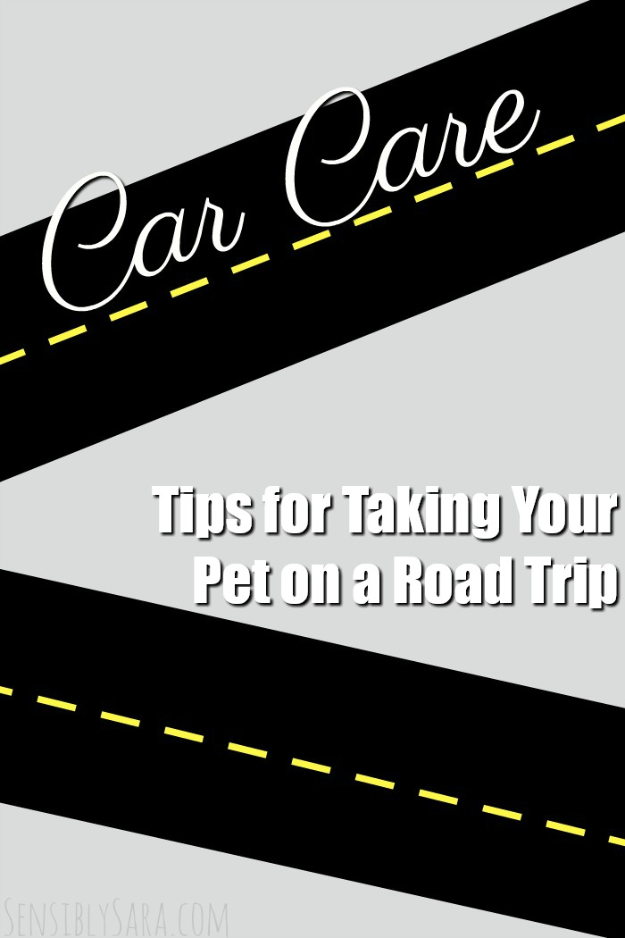 Tips for Taking Your Pet on a Road Trip | SensiblySara.com