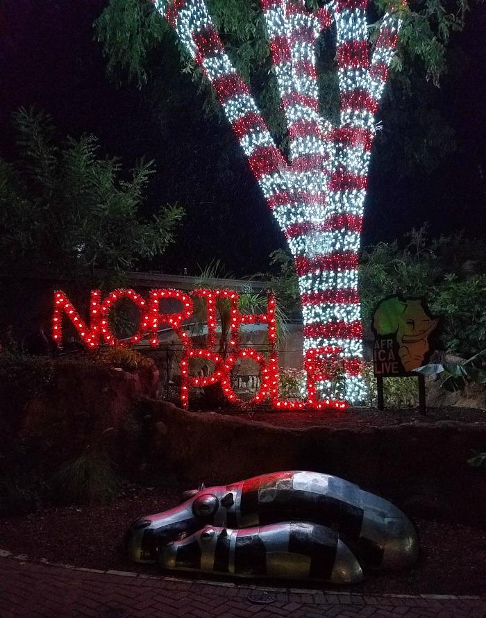 San Antonio Zoo Lights | SensiblySara.com