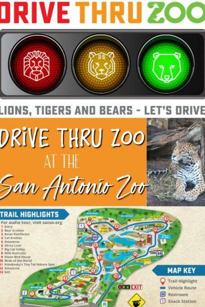 San Antonio Drive Thru Zoo